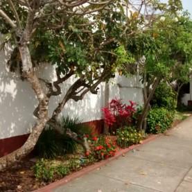 2 - Jardim Entrada