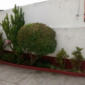 3 - Jardim Entrada