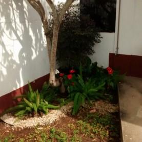 4 - Jardim Entrada